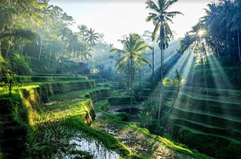 """Những địa điểm ở Bali giúp bạn có những tấm ảnh """"triệu like"""""""