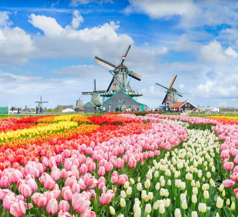 Du lịch châu Âu mùa xuân