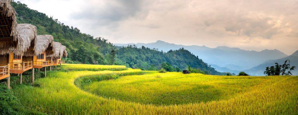 cánh đồng Hà Giang